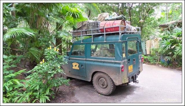 Kilimandscharo Safari